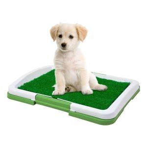 Kutya WC - 47 x 34 x 6 cm - 1 L - 60016